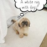 Rug In The Middle Guest Room & A Giveaway
