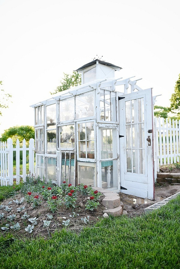 DIY rustic window greenhouse - Take the full tour of this hand built greenhouse made out of antique windows inside & out!