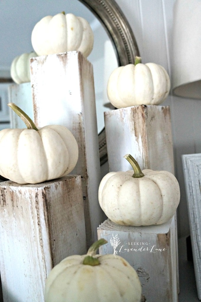 white-pumpkins-on-rustic-wood-681x1024