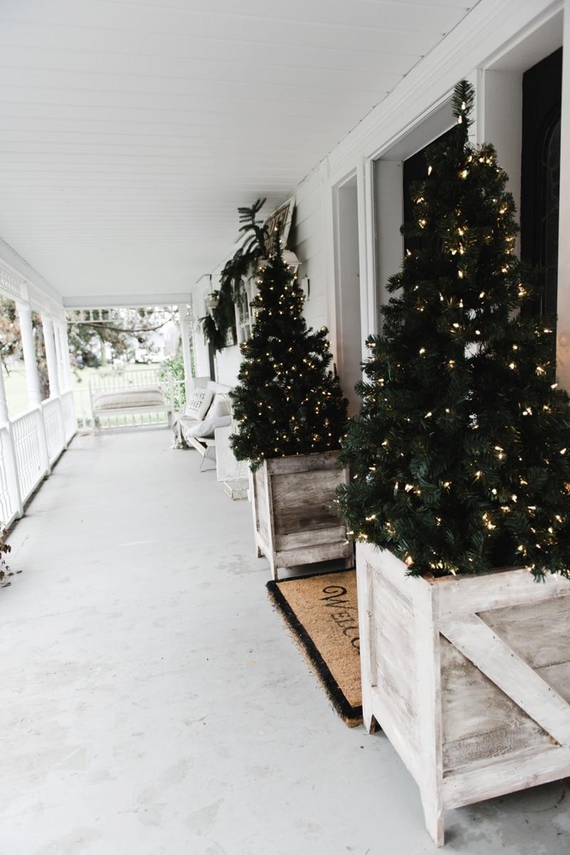 Christmas Lights Driveway