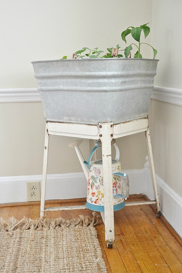 DIY wash tub herb garden - A great way to have a small herb garden inside our outside!