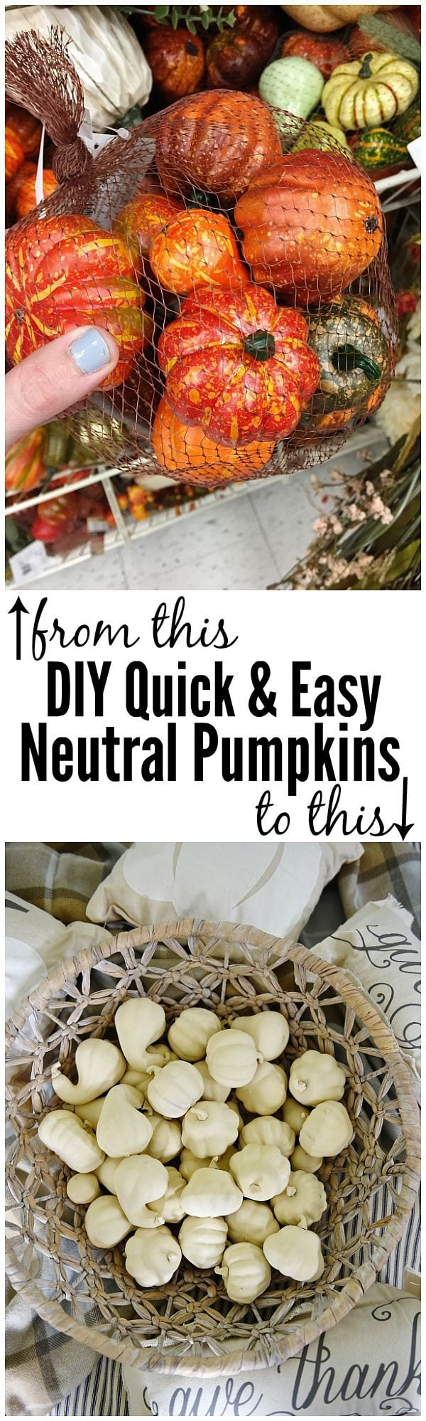 DIY chalky finish pumpkins the EASY way! A must pin to make all of your fall decor neutral.