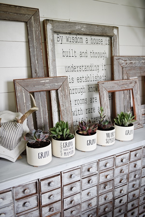 DIY succulent planters - a great idea for mothers day gifts, get well soon gifts, & so much more. A simple decor addition to any decor style & succulents are so easy to keep alive!