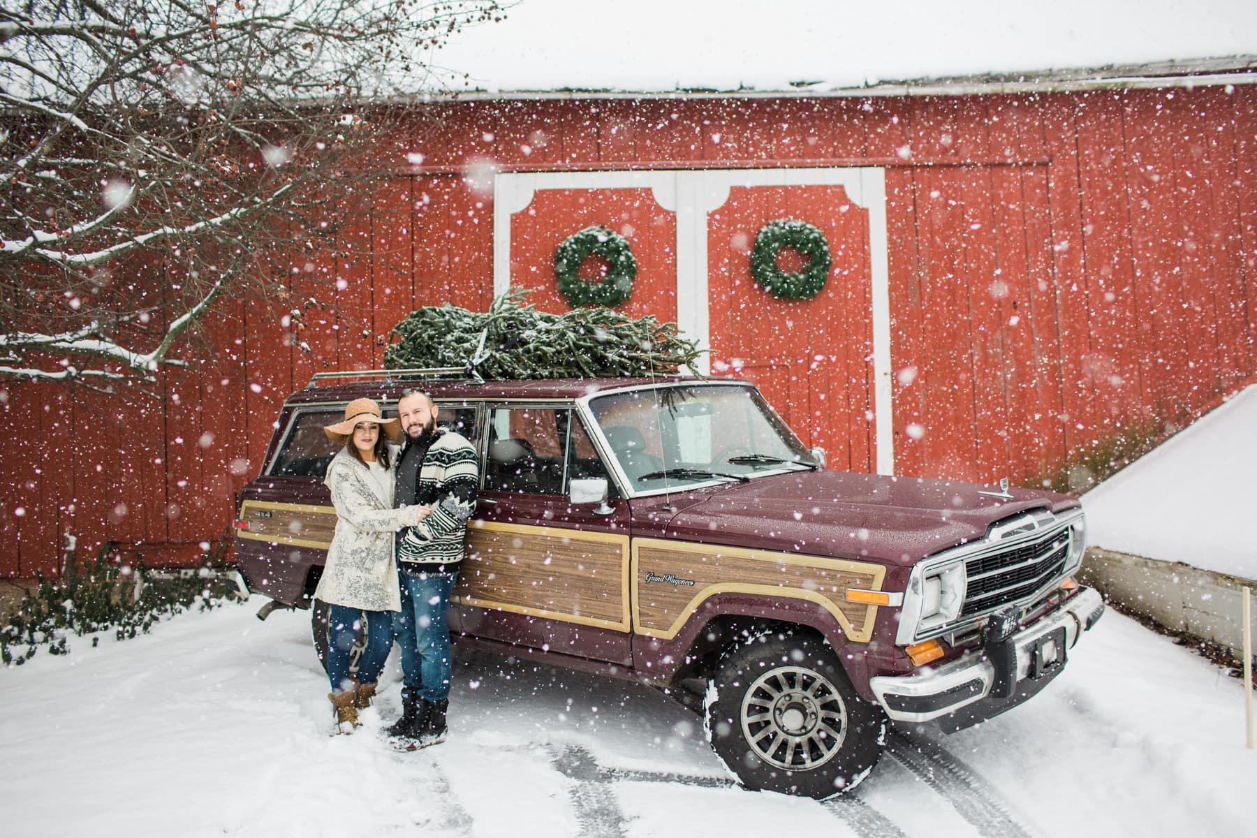 Christmas At White Cottage Farm
