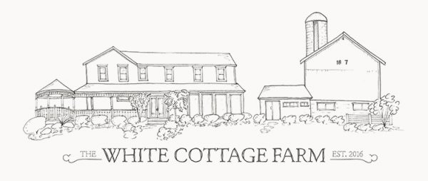 Cozy, Cozy White Cottage: Creatives In The Book