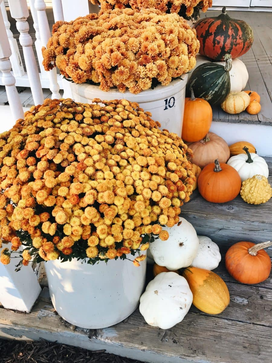 Eclectic Pumpkin Fall Porch Steps