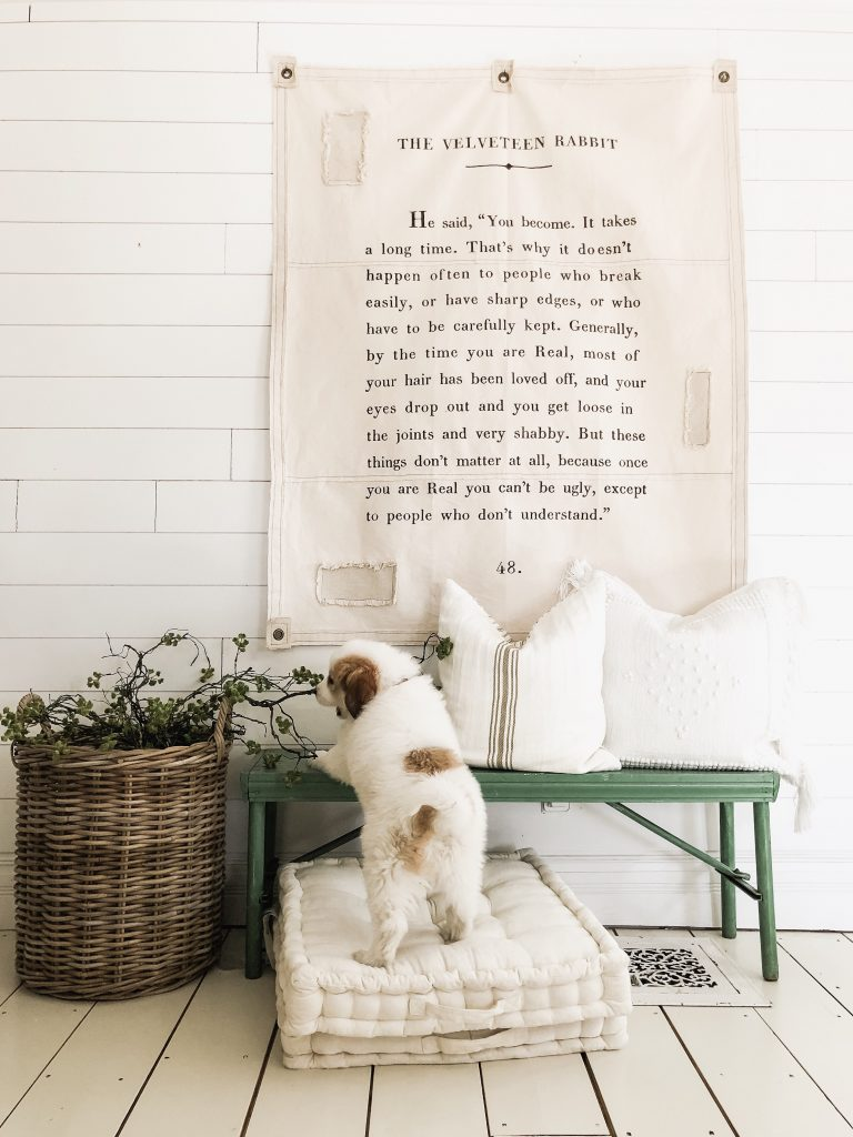 drop cloth with quote