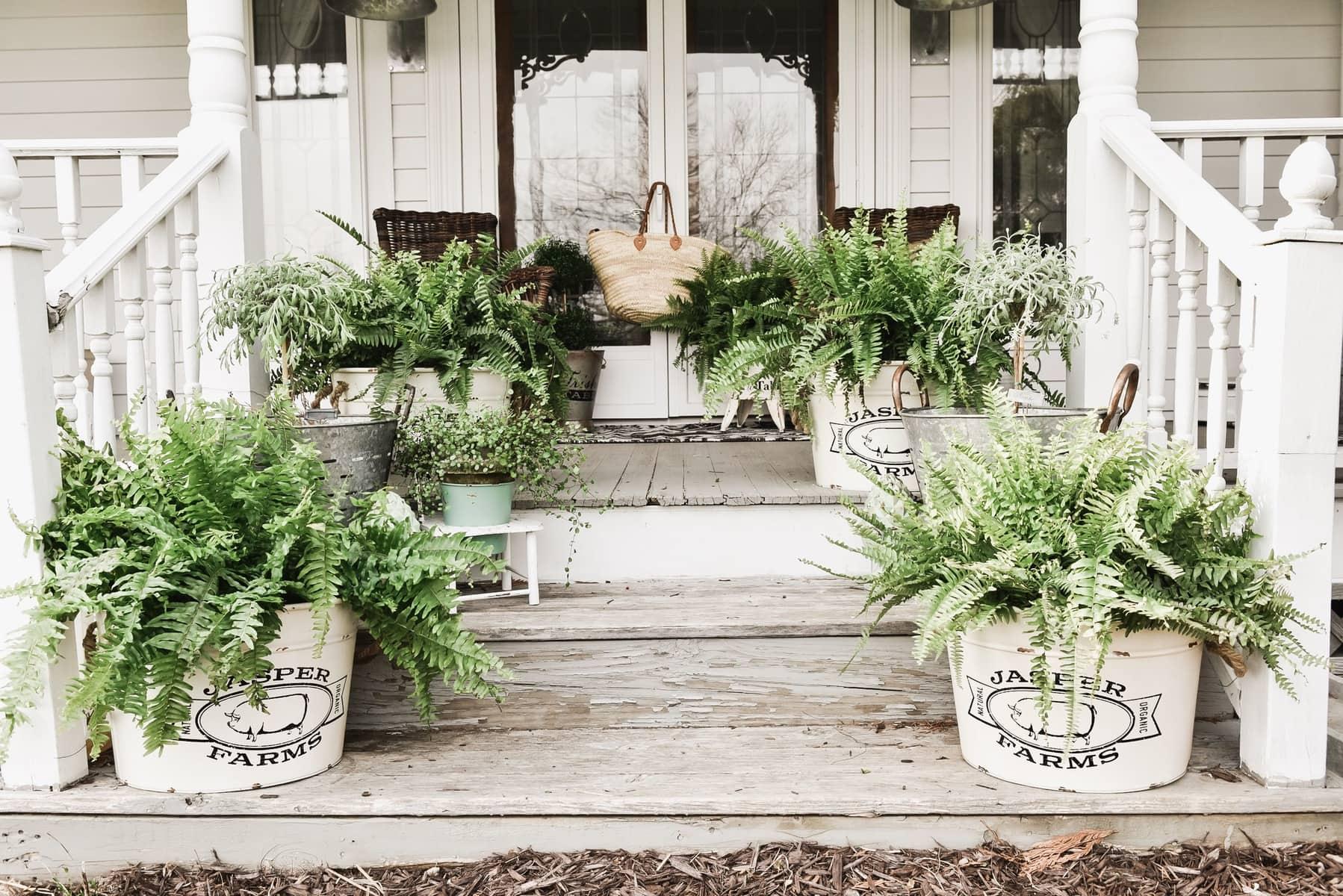 Spring Porch Steps