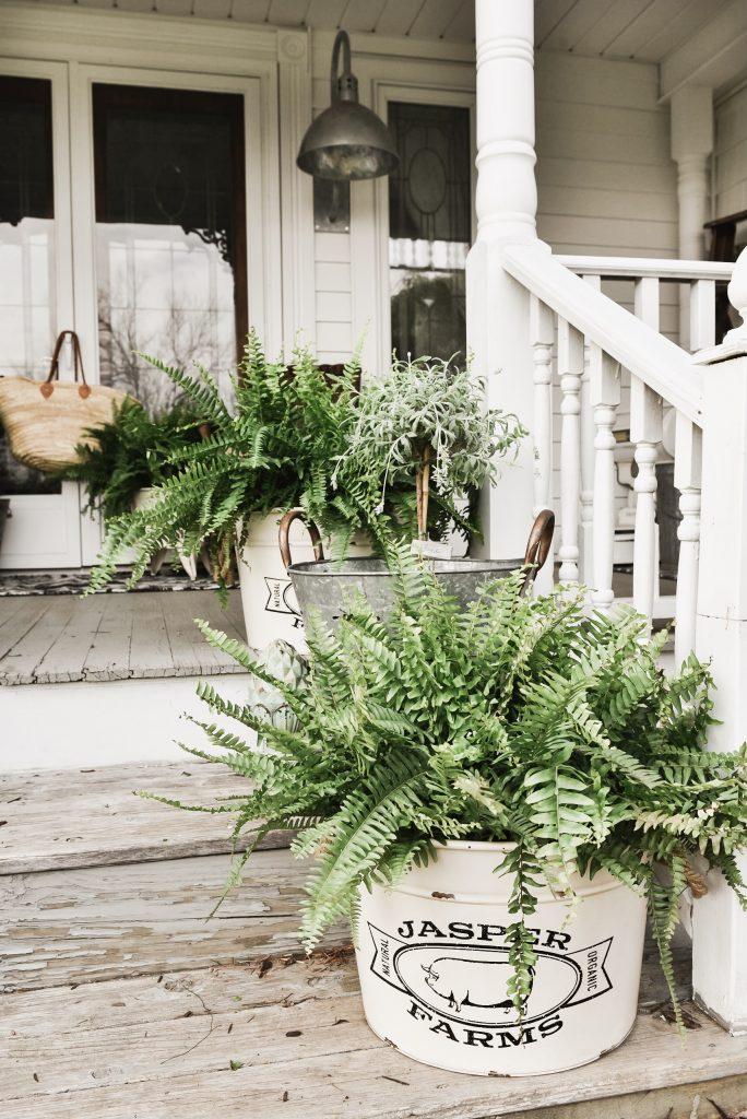 TSC, Spring Porch Steps