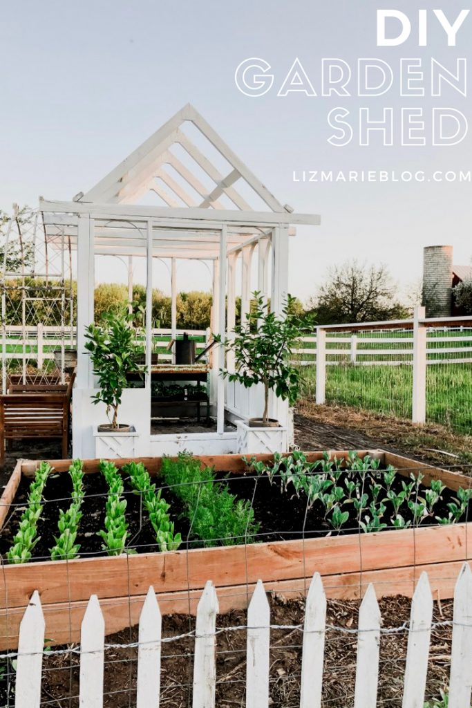 Diy Greenhouse Garden Shed Liz Marie Blog