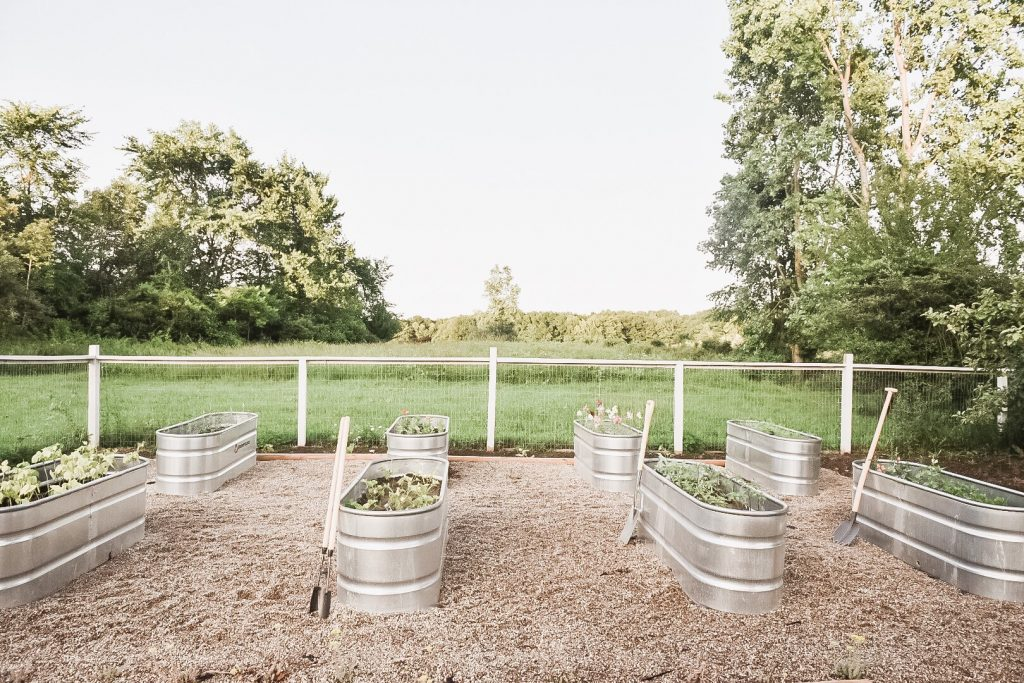 Picture of: Why We Chose Raised Garden Beds Stock Tank Garden Beds Pros Cons Liz Marie Blog