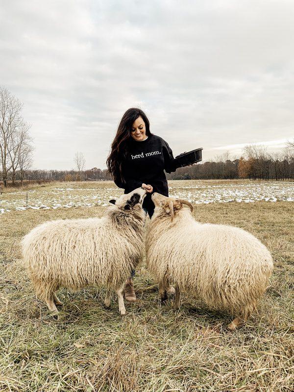 , herd mom.  black sweatshirt