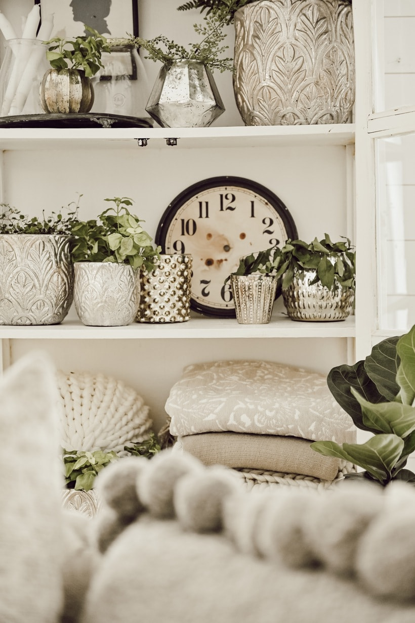 Plants in a bookcase with pillows and blankets