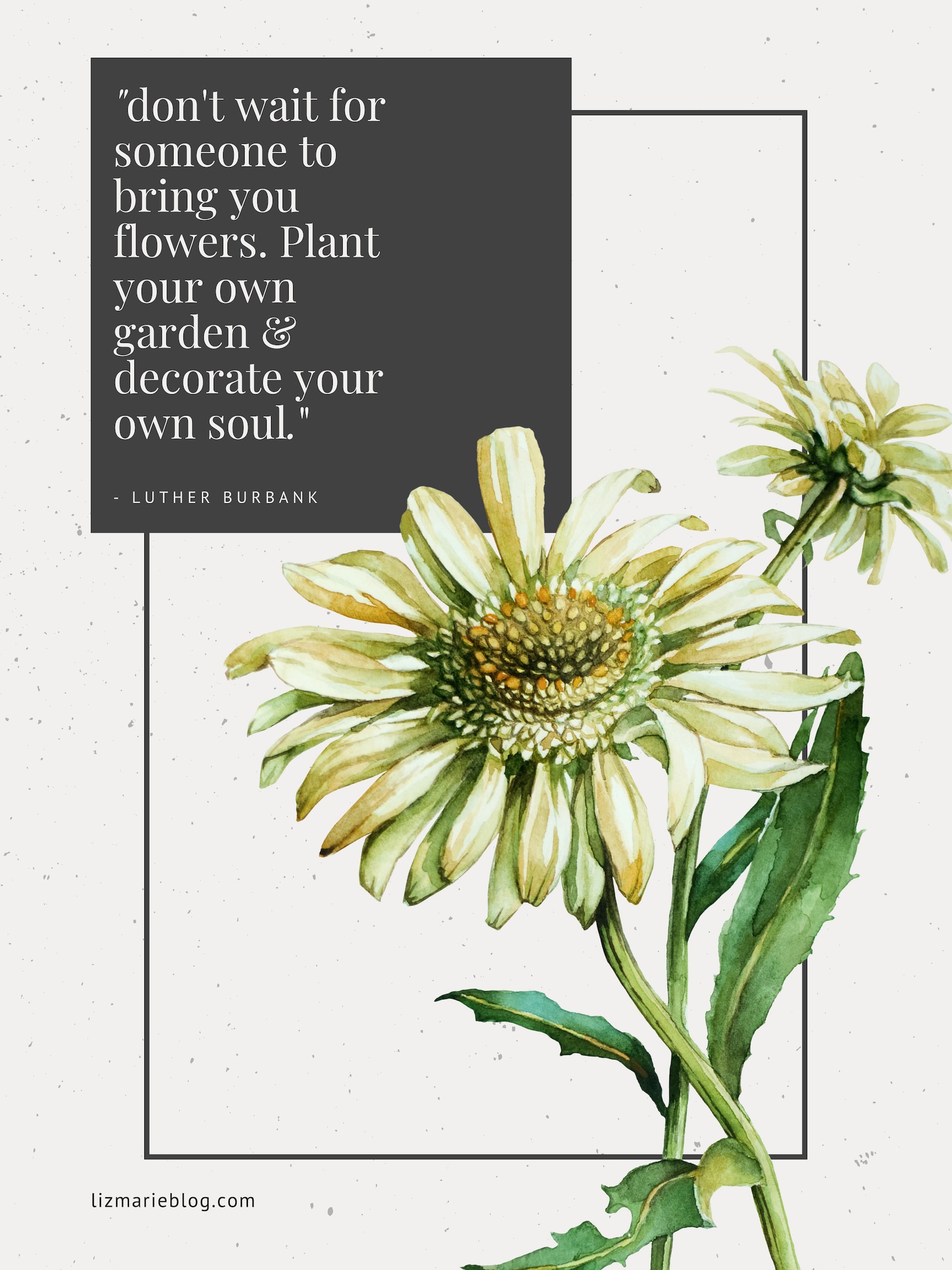 don't wait for someone to bring you flowers. Plant your own green & decorate your own soul. Inspirational quote by Luther Burbank
