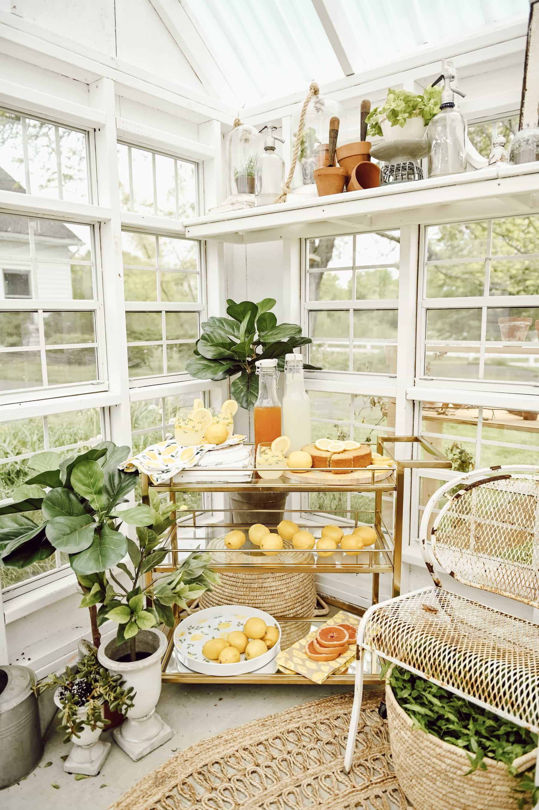 Greenhouse with a lemon drink cart in the corner