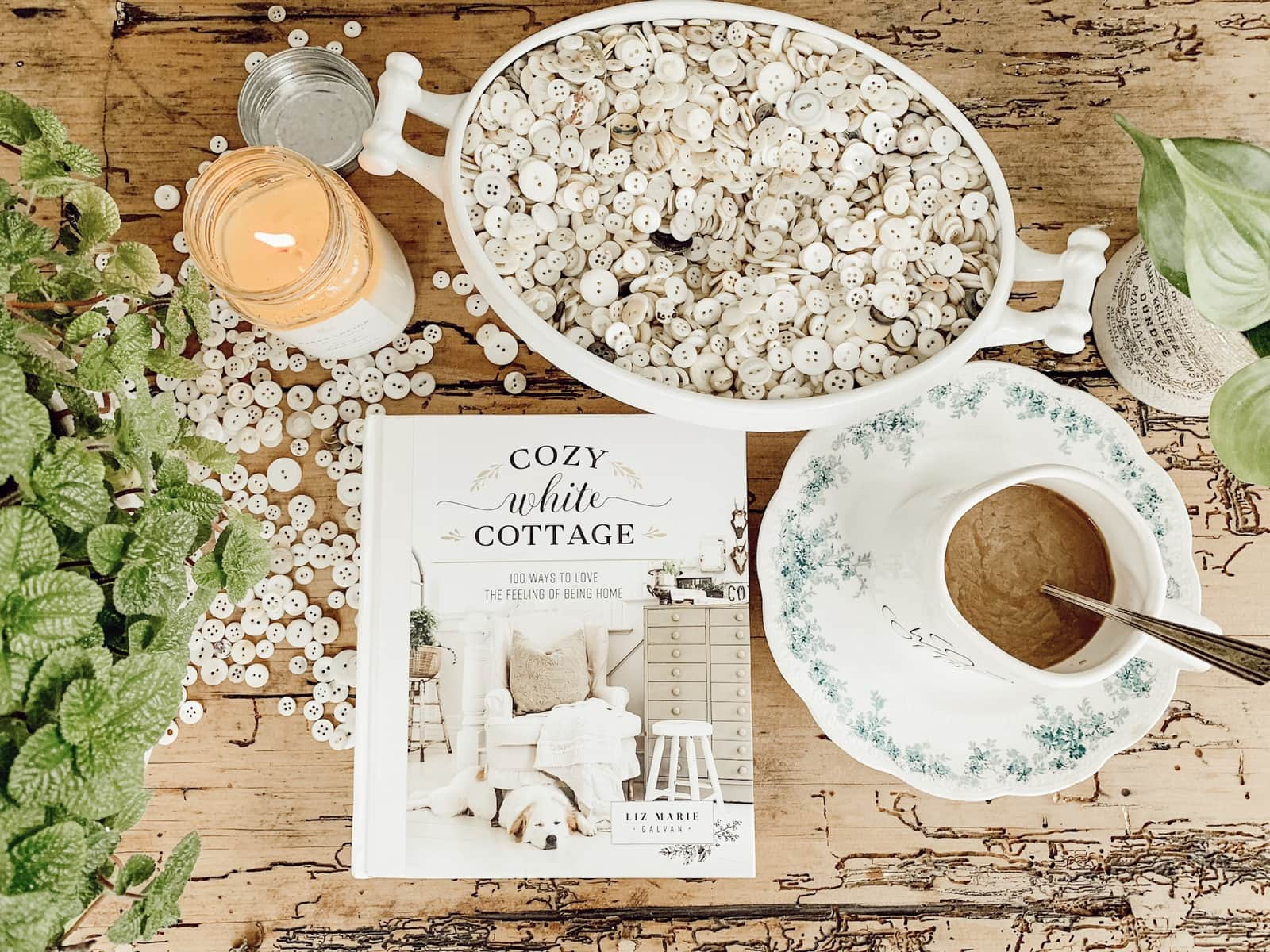 Cozy White Cottage: Creatives In The Book
