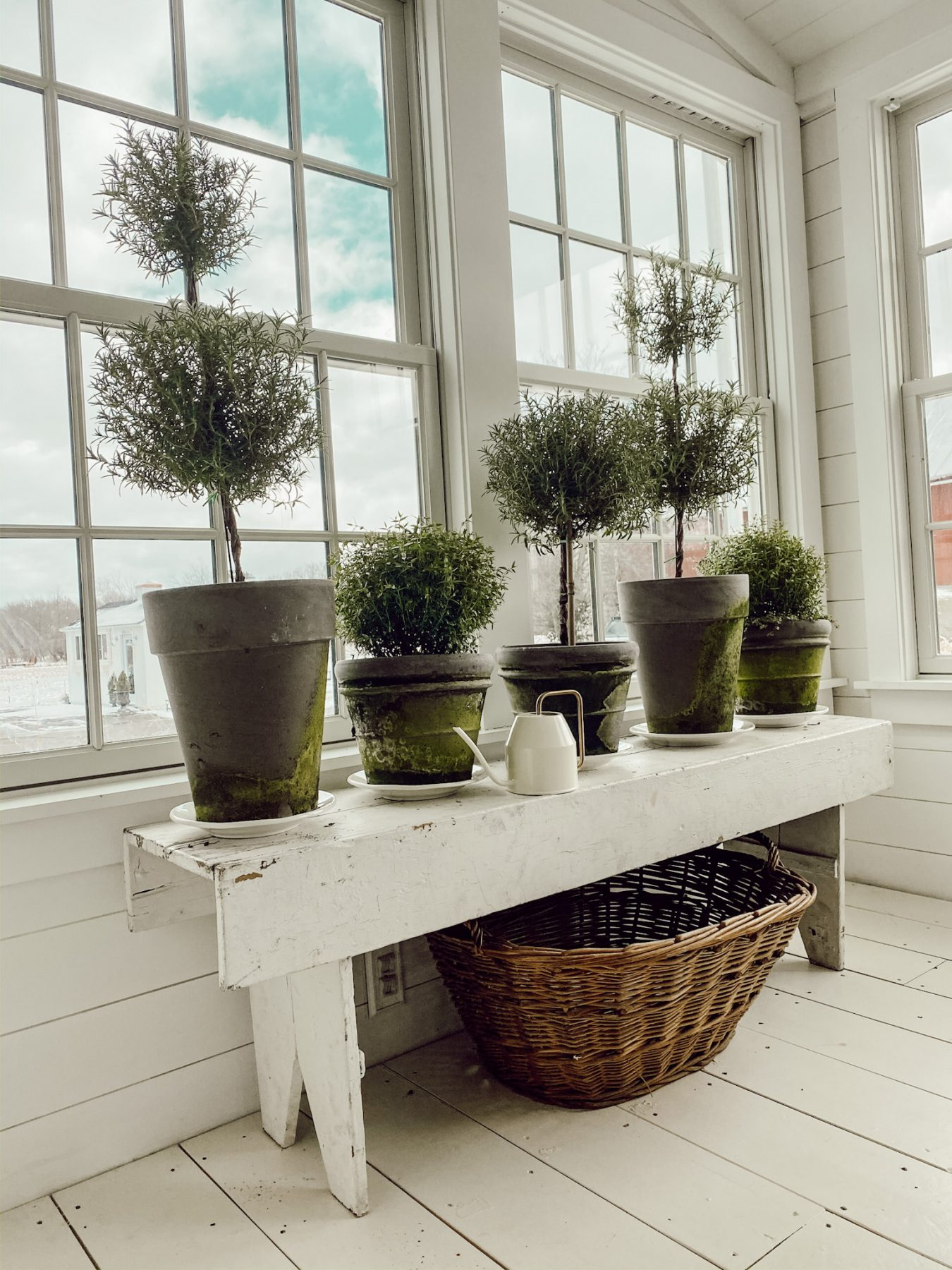 Greenhouse in Cottage Style Sunroom
