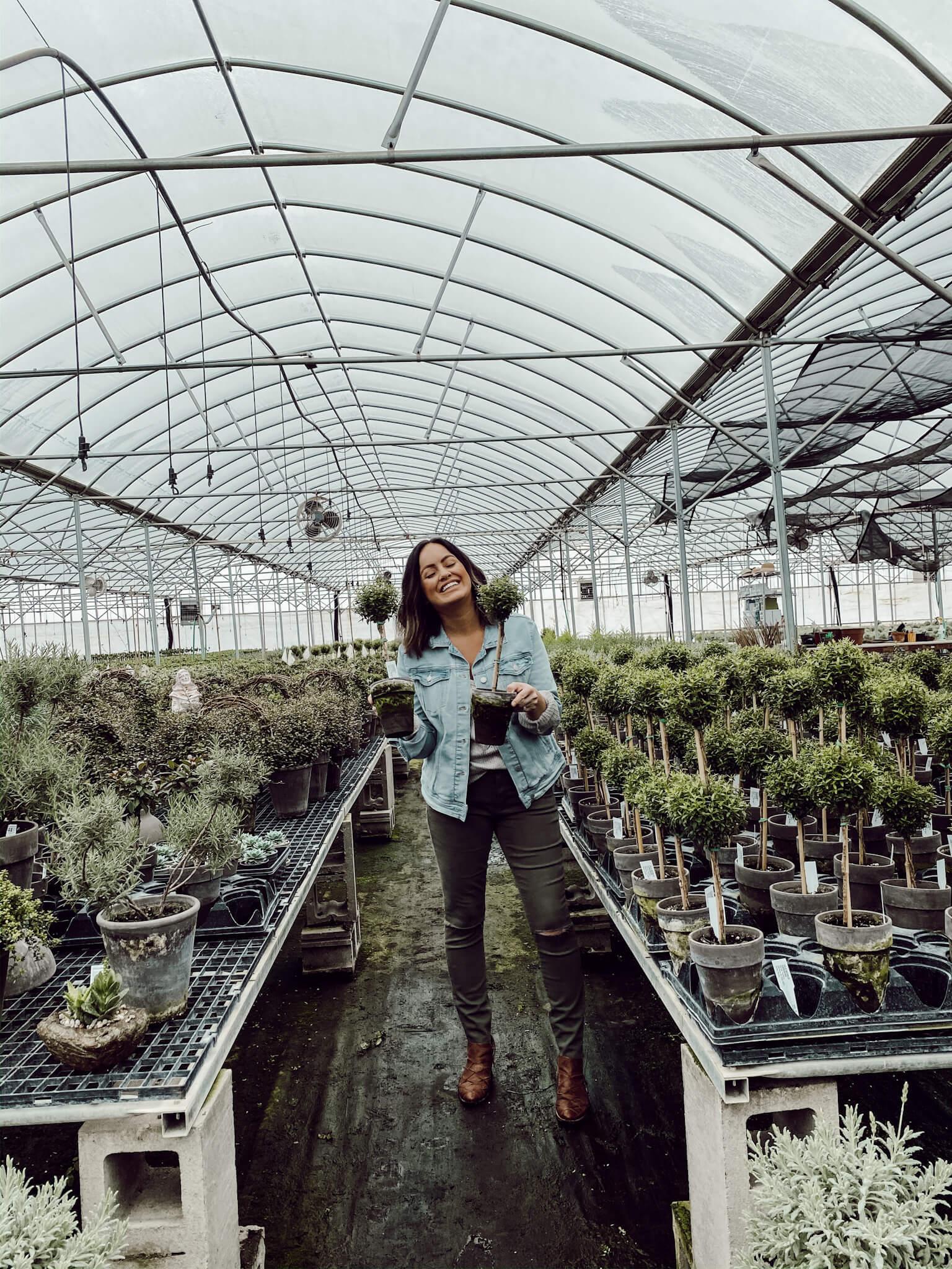 Best Plants for Farmhouse Style