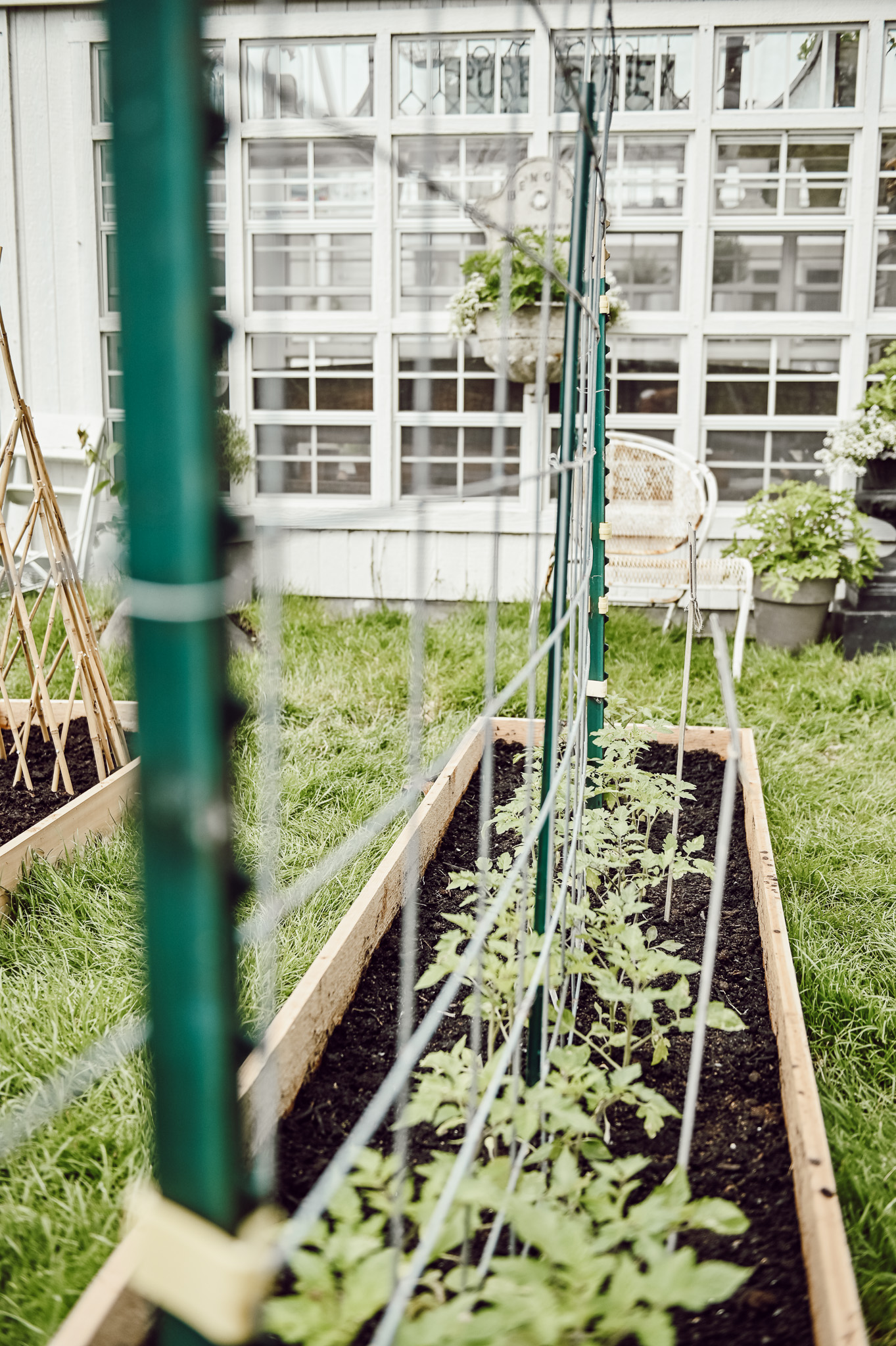 DIY Garden Bed with Trellis