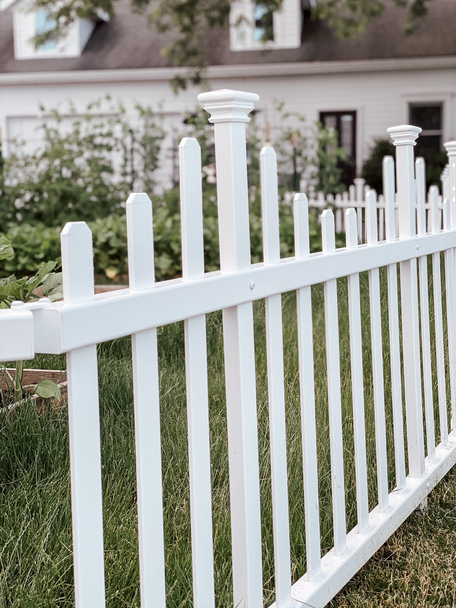 Garden Fence Review