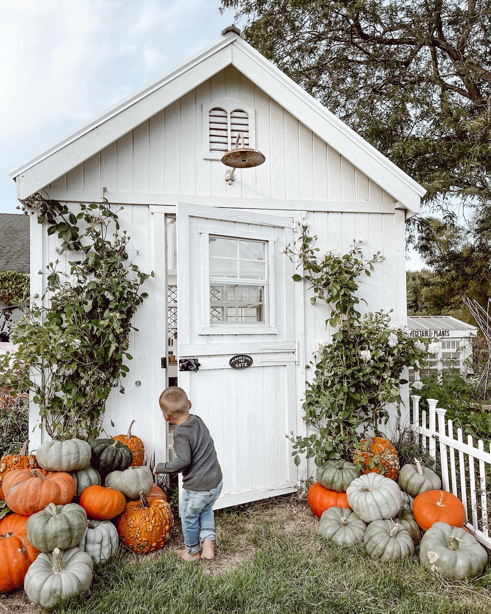 Favorite Things Friday: Fall Decor, Antique Finds, and My Friday Finds!
